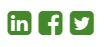 icone social média
